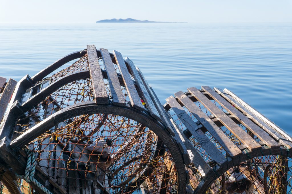 Lobster cages fishing - What do to in the Magdalen Islands