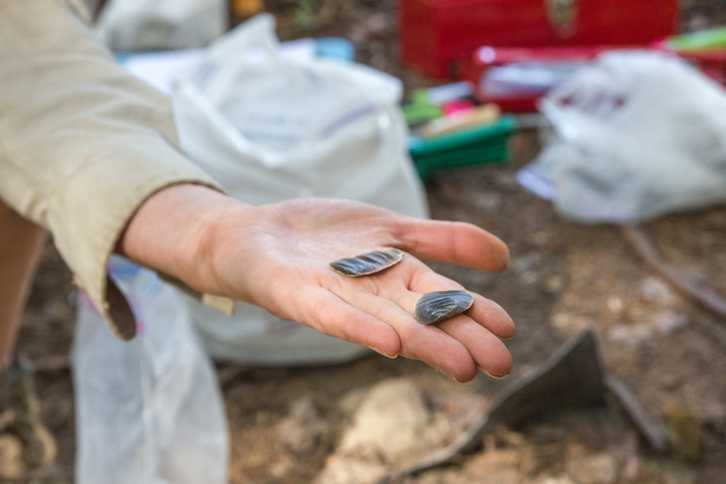 Become an Apprentice Archaeologist in Témiscouata